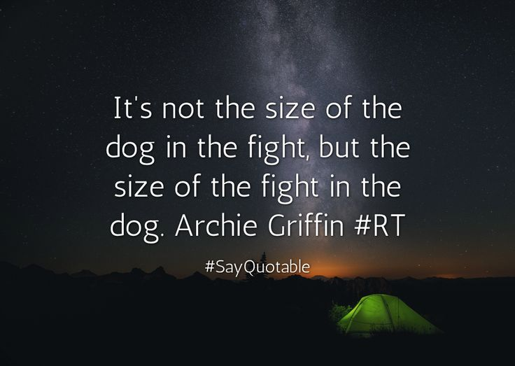 Quotes about It's not the size of the dog in the fight, but the size of the fight in the dog. Archie Griffin  #RT with images background, share as cover photos, profile pictures on WhatsApp, Facebook and Instagram or HD wallpaper - Best quotes