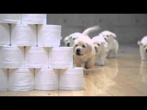 Kimberly-Clark. Andrex/Cottonelle Ad. - YouTube