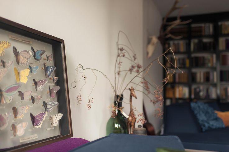 vlinderkast zelf maken | www.twoonhuis.nl