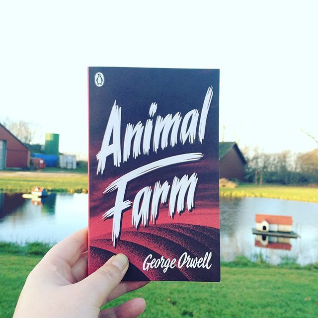 47/52: A book which is banned: George Orwell's Animal Farm. This book is still banned in North Korea - surprise! Orwell does these political manipulations stories so well. He lays it out so subtly that you feel for the animals and understand how this could happen. To animals and humans alike.