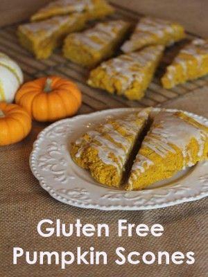 Gluten free pumpkin, Pumpkin scones and Scones on Pinterest