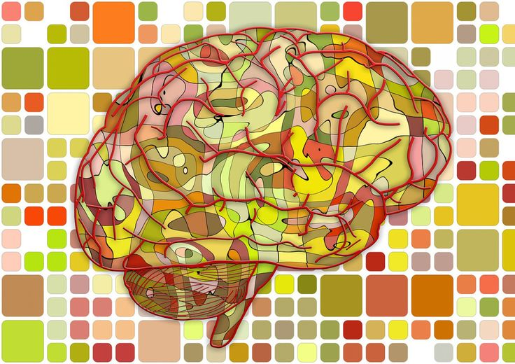 Är du smart? Hur smart är din partner? Vem är smartast? Gör ett vetenskapligt IQ-test online och ta reda på det!