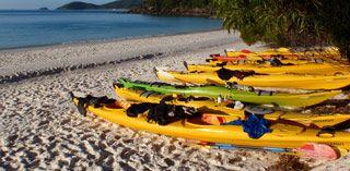 Salty Dog Sea Kayaking Whitsundays