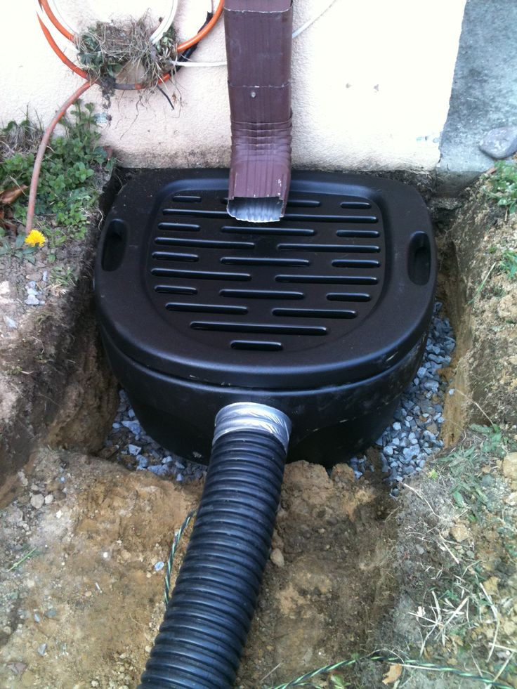 Downspout Pre Filter Rainwater Harvesting Backyard