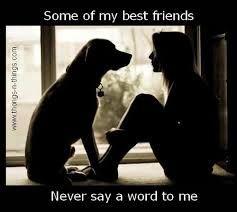 girls best friend dog quotes