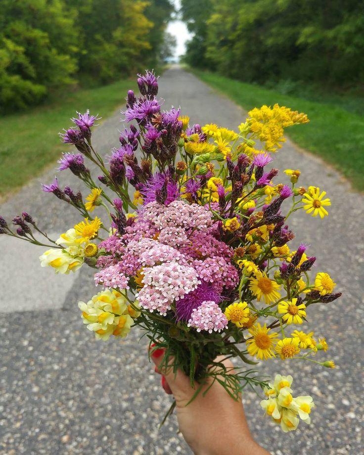 💐💐💐  #virágcsokor #virágillat #corsage #bouquet #flower #flowers #colourful #pink #yellow #purple #green #forest #road #lonelyroad #biketour #tour #trip #nature #lovenature #weekend #chill #autumn #september #mik #ikozosseg #magyarig #hungary