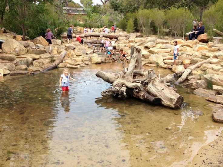Rio Tinto Naturescape, Kings Park - Blog - No.1 FREE online guide for WA families http://www.buggybuddys.com.au/magazine/read/rio-tinto-naturescape-kings-park_186.html