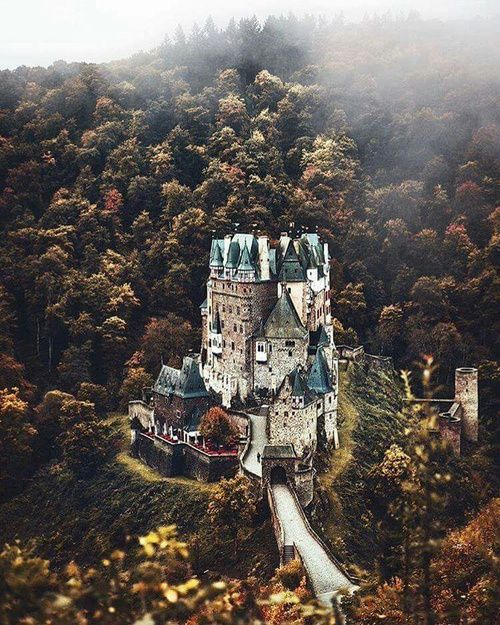 Imagen de castle, germany, and forest