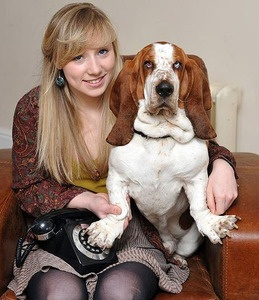 This is George, the UK basset who dialed the police (using a rotary phone!) as he was strangling himself to death.