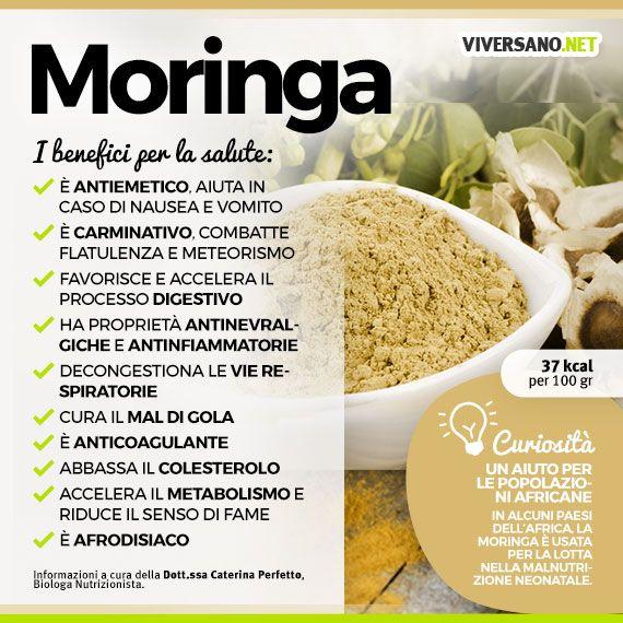 www.viversano.net wp-content uploads 2016 11 Moringa-proprieta-ViverSano.net_.jpg