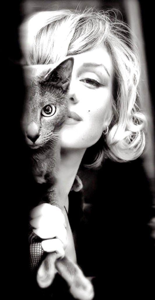 Antes veía una foto de Marilyn Monroe y me gustaba, por supuesto, ¿a quien no? Pero la miraba con cierta frialdad. Mi grado de fascinaci...