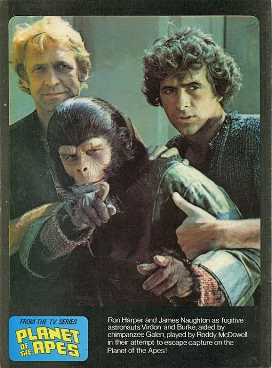 Time for the Ape of the Day!  Fun fact: Galen and Burke had begun to sense that deep down, Virdon just wasn't into it anymore.