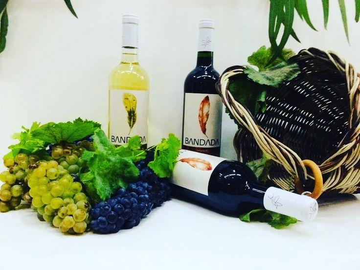Bodega Reyes Magos On Instagram Conoces El Vinobandada No Dejes Pasar La Ocasión Y Pruébalo Lo Tenemos En Exclusiva En Bodegareyesmagos Bath Caddy