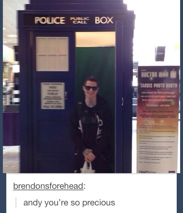 OH MY GOD!!!! TWO OF MY FAVORITE THINGS!!! FALL OUT BOY AND THE TARDIS!!!