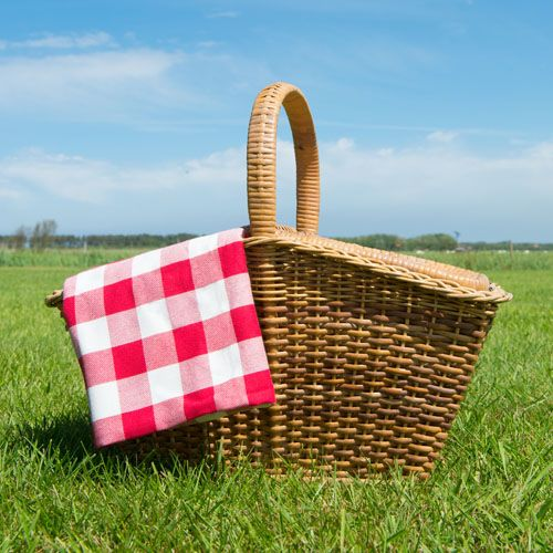 7 Awesome Picnic Parks in St. Louis Your Kids Will Love*