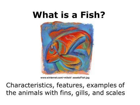 17 best images about zoology on pinterest montessori for Characteristics of fish