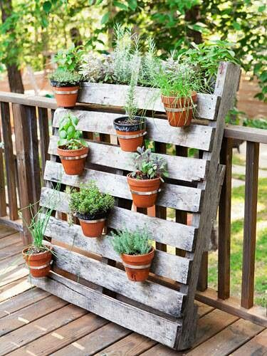 Pallets can be vertical gardens with just a bit of creativity.