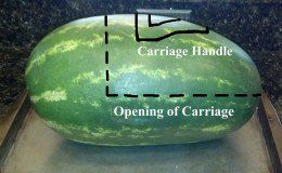 A outline guide for the carriage opening and handle.