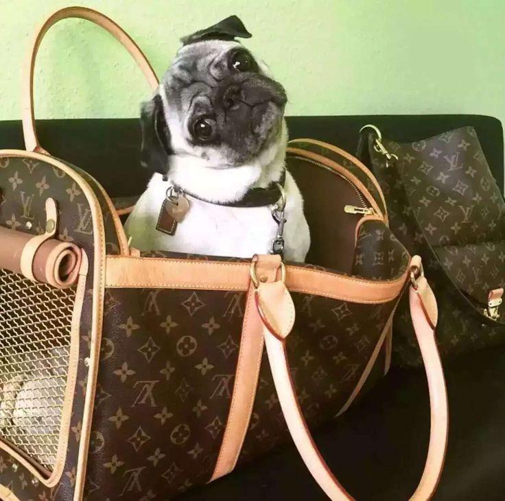 louis vuitton Luggage, ID : 42579(FORSALE:a@yybags.com), louis vuitton buy, louis vuitton since, original louis vuitton bags, louis vuitton handbag prices, louis vuitton cheap rolling backpacks, loui vuitton bags for sale, louis vuitton leather laptop backpack, louis vuitton briefcase bag, louis vuitton the handbag shop #louisvuittonLuggage #louisvuitton #louis #vuitton #monogram