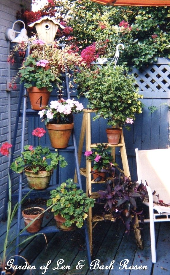 Garden Ladders ~ using vintage ladders in the garden  http://ourfairfieldhomeandgarden.com/garden-ladders/