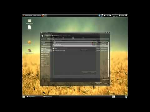 Install iTunes on Ubuntu Linux - http://software.artpimp.biz/linux-software/install-itunes-on-ubuntu-linux/