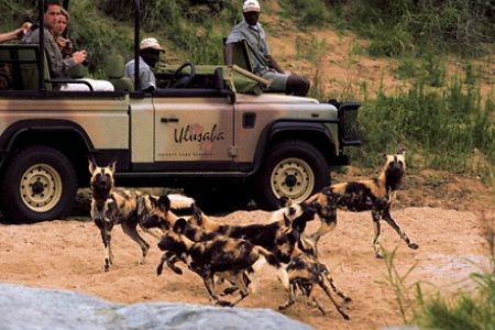 Things To Do In South Africa - South Africa Tourist Attractions
