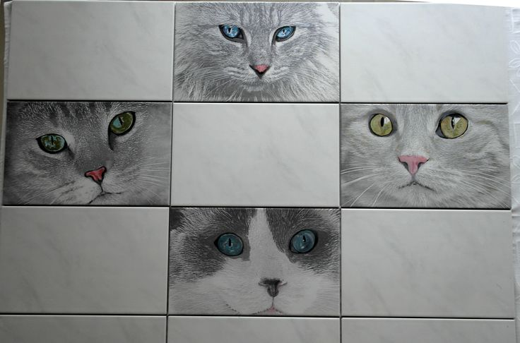 Nice cats engraved to ceramic tiles (40x25cm).