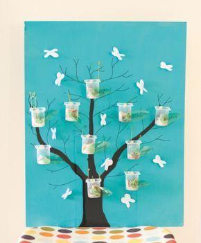 Fiche créative n°2 – L'Arbre qui pousse – Savoirs plus - créer un arbre avec des pots de yaourts, faire pousser des lentilles