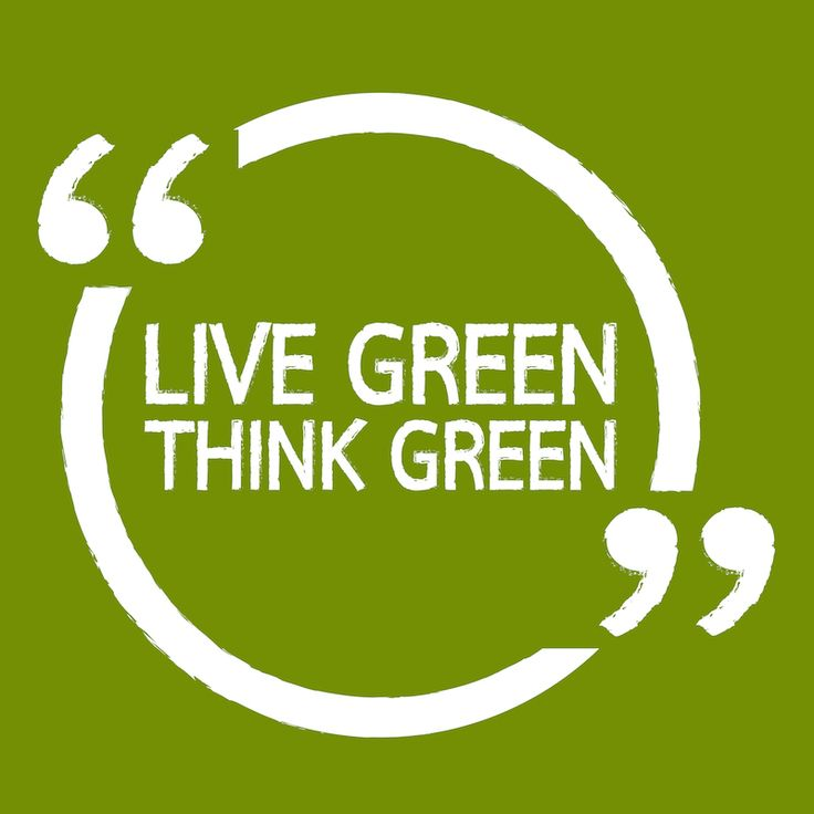 It's never too late to make a change! Here are my tips on how to go green this year.