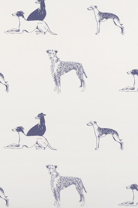 Longdog wallpaper. Greyhounds, whippets, and lurchers.