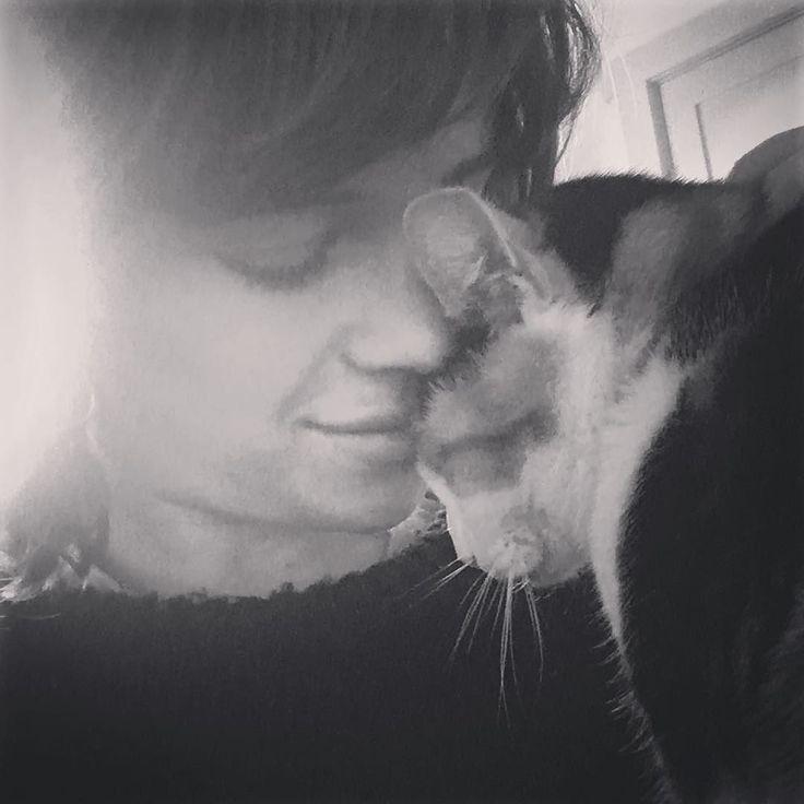 #cat #catsofinstagram #kitty #kitten #catstagram #cats #furbaby #love #pet #cute