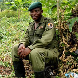 'As an enforced child soldier, Rodrigue Katembo saw his little brother die and had to carry the news to his mother. Now 41, he remains on the frontline – but today he protects the extraordinary wildlife in the national parks of the Democratic Republic of Congo (DRC) from armed militias.' - Damian CarringtonFrom Congo child soldier to award-winning wildlife ranger – a life in danger: