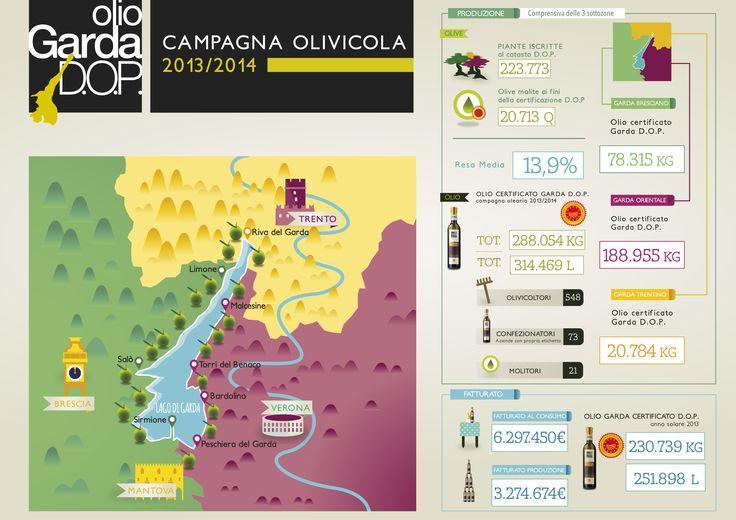infografica olio