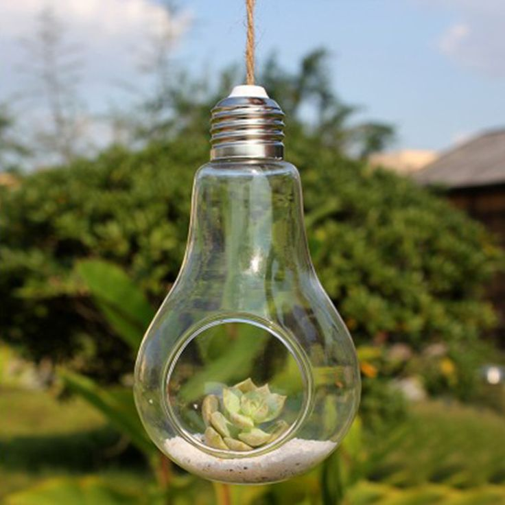 New Glass Bulb Lamp Shape Flower Water Plant Hanging Vase Hydroponic Container Home Indoor Wedding Decor