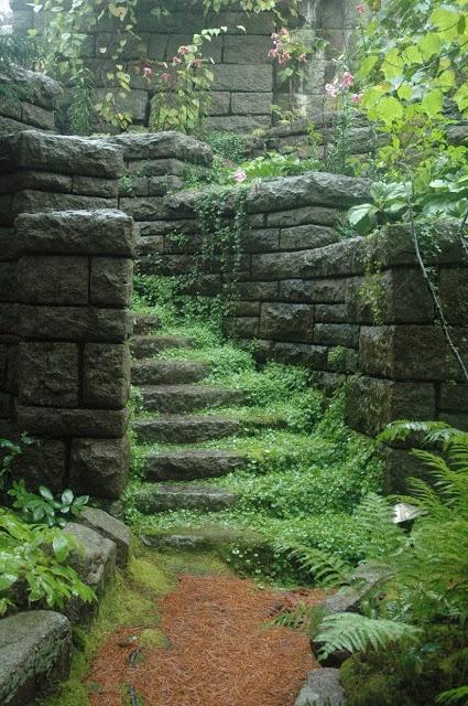 "use of plants on stairway, South Terrace, ""Skylands"""