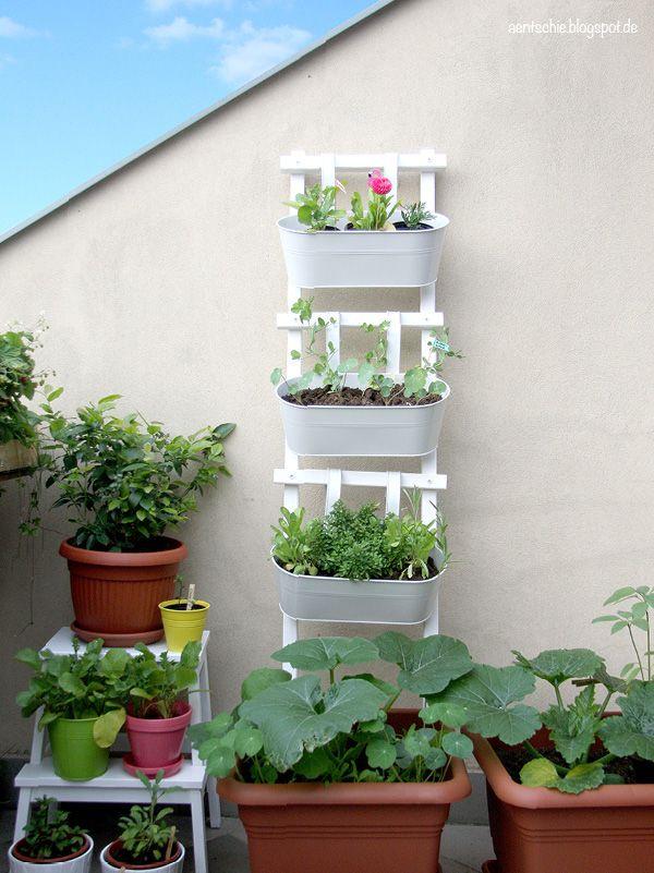 49 best garten images on pinterest gardening balcony gardening blumenleiter diy balcony ideascontainer solutioingenieria Images
