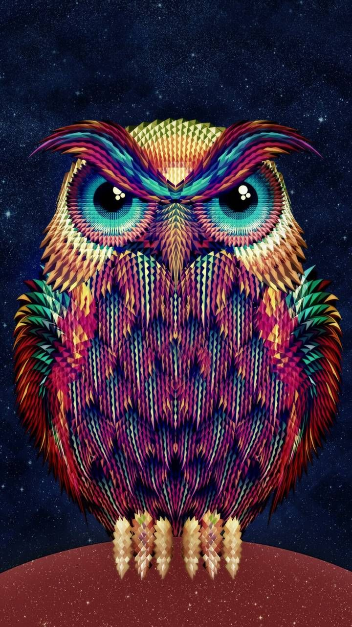 Owl Phone Wallpaper With Images Owl Wallpaper Owl Art