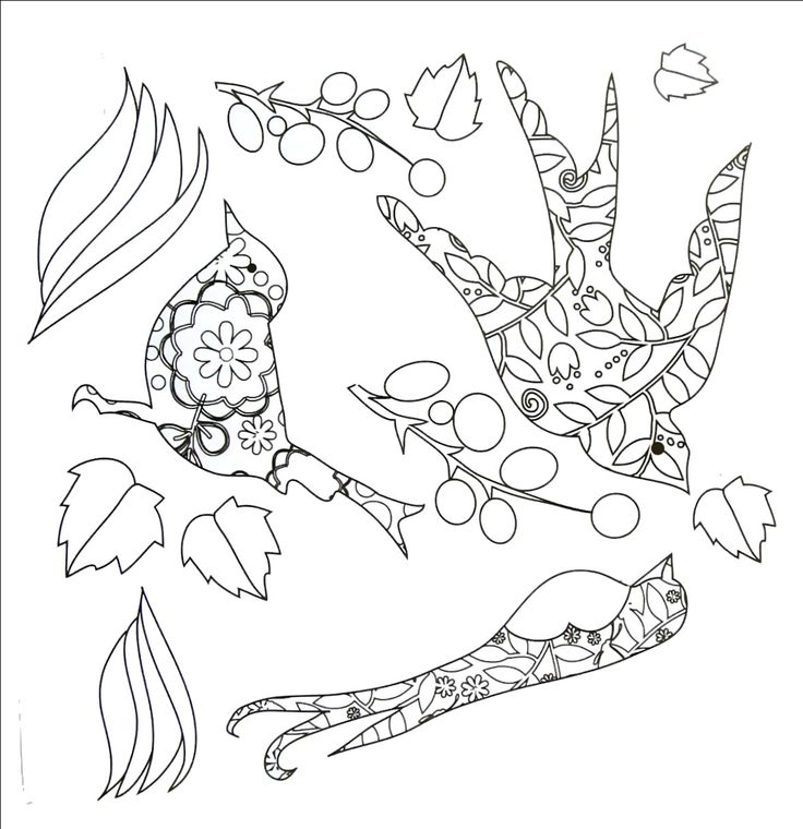 57 Best Animal Coloring Book Pages Images On Pinterest For Kids Northern Pike  Coloring Book