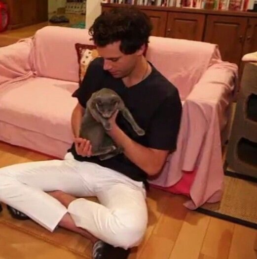 Mika at a cat cafe in Japan