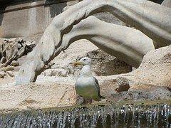 Fontana, Di, Trevi, Fuente De Trevi