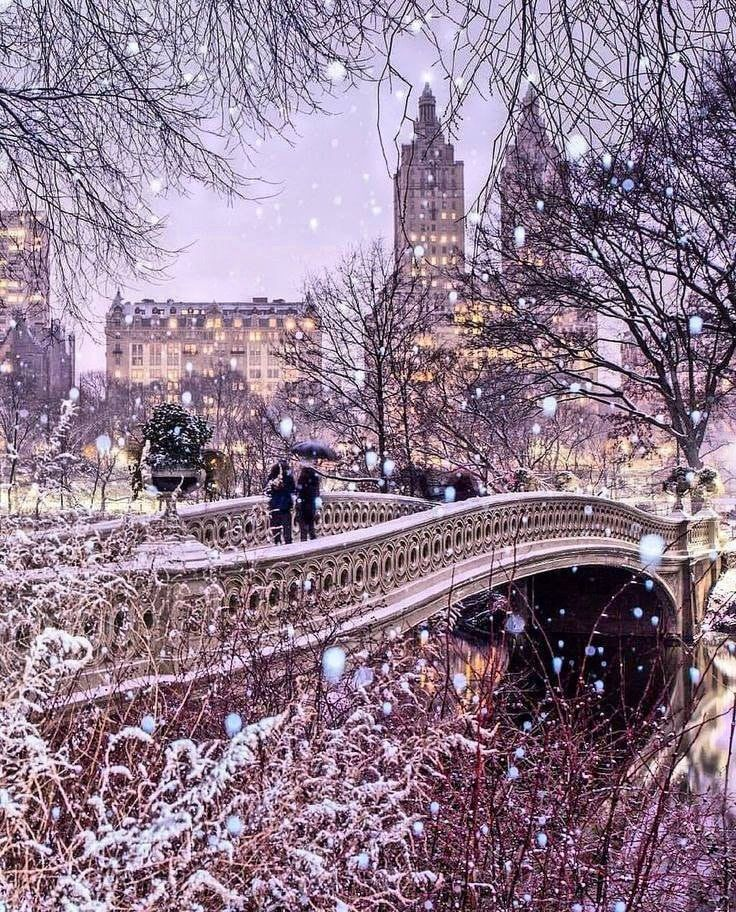 Bow Bridge Central Park New York City In 2020 New York Christmas City Photo