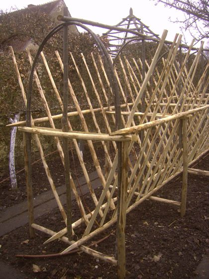 Les framboises amazing system for growing berries, dividing 1 & 2nd year growth and includes a bird netting frame.