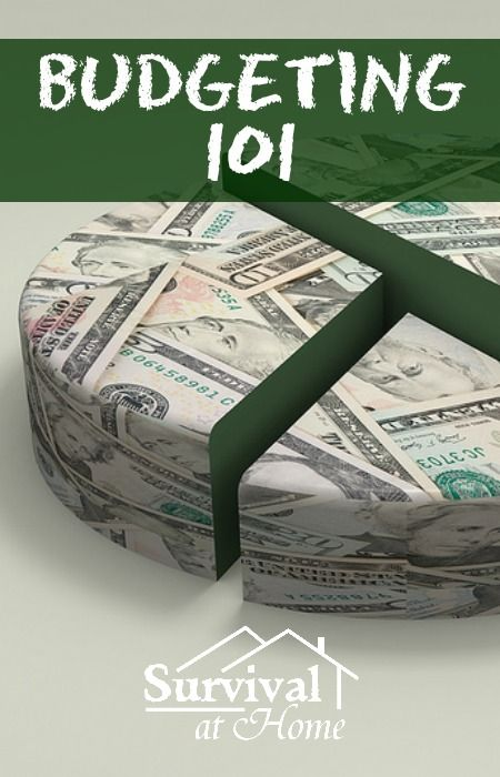 """Budgeting 101   Survival at Home: """"Making a budget can be very stressful, but it is definitely worth the time spent doing it. Rebecca from 'Letters from Sunnybrook' says 'The first thing to do is create what I like to call a 'Financial Snapshot'.""""   #prepbloggers #budget #howto"""