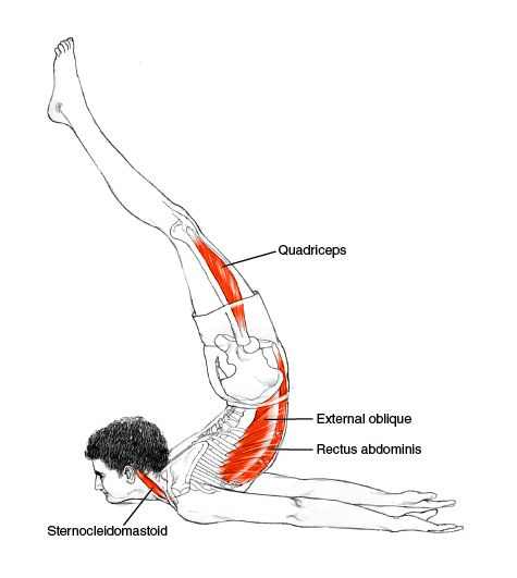 Salabhasana - Locust Pose  Builds muscle strength of the lower part of the spine  Increases flexibility in the back Especially recommended for relieving sciatica pain in the lower back   Massage internal organs    Improves digestion   Strengthens the arms and shoulders    Stimulates Swadhisthana chakras - Increases the digestive fire  Yoga - Inspirations :: http://celfit.manifo.com/