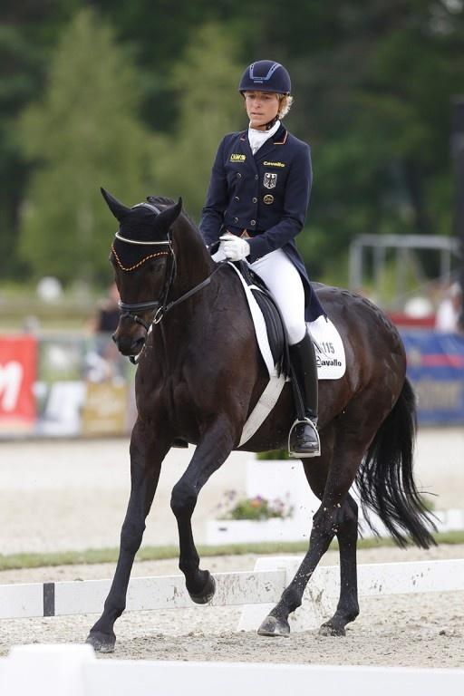 ST.GEORG - Reiten, Dressur, Springen, Vielseitigkeit und Pferdezucht   News   CIC*** Luhmühlen: Schweden führt
