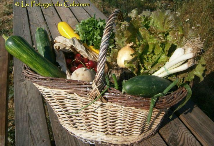 paniers bio fruits et légumes bio AB du Potager du Cabanon - Garéoult Var PACA