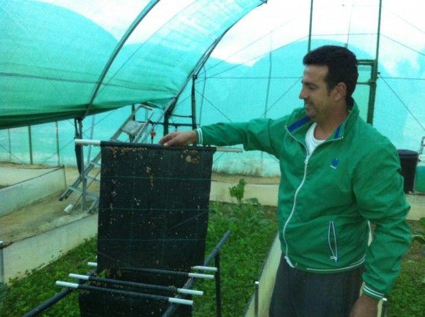 Primera Granja de Caracoles en Bonares, HELIXHUELVA. | Bonares Digital
