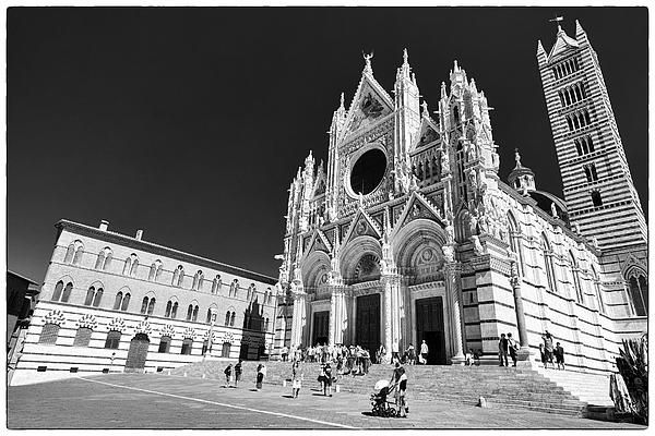Siena's stunning cathedral in black and white. My #photo on Pinterest