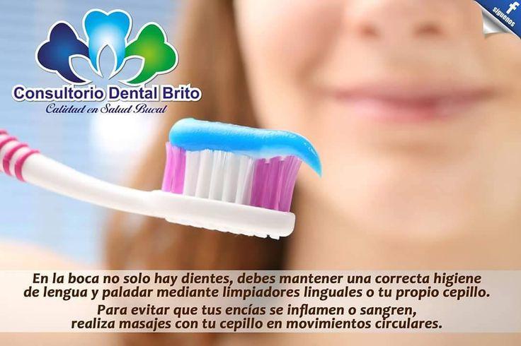 Visítanos   #centroDentalBrito #CalidadenSaludBucal #Odontología #Ibarra #Atuntaqui #Imbabura#dentistrylife#dental#alldental#odontopediatria#periodoncia#ortodoncia#endodoncia#cirugiaoral#odontologiageneral#dentist#odonto#dentalhygenist#dentallab#dentalcare#dentalcare#braces#orthodontics#dentalschool#dentallife#dentalassistant#dentalmaterials#teeth#mouth#odontólogo#pediatrics