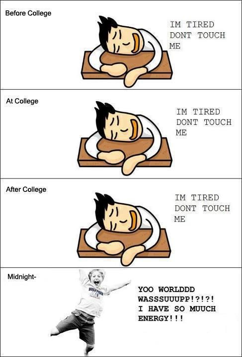 After college life's just awesome: Funny Things, Schools, Truth, My Life, Funny Stuff, So True, Humor, Funnies